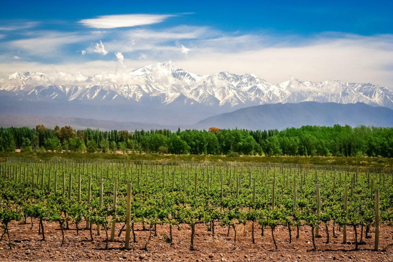 Autorondreis Argentinië road trip Argentina Mendoza