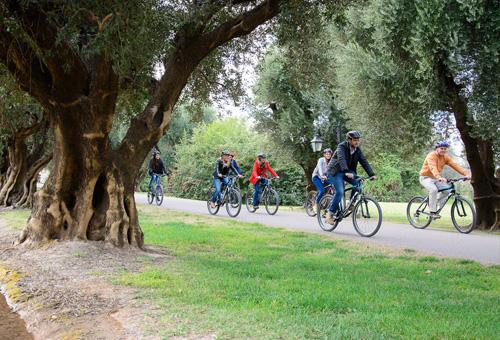 Wine bike tour mendoza